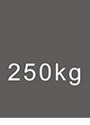 MWL 250kg