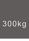 300kg MWL