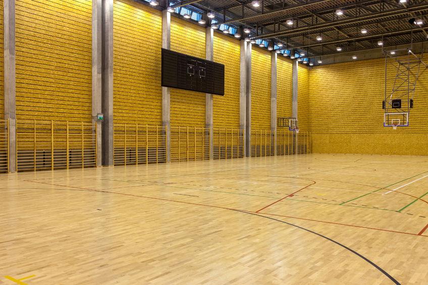 Sports Hall Load Arrestor